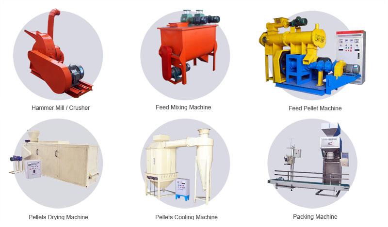 fish feed production equipment