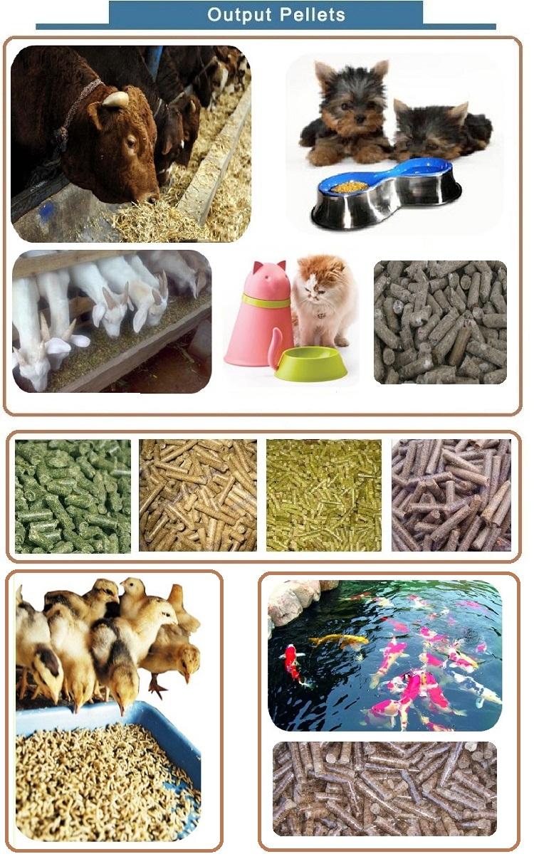 Livestock feed pellet mill